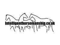 IH-Logo-white.jpg